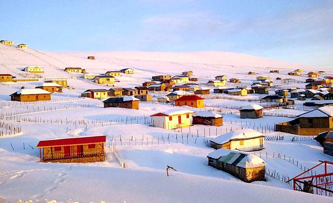 صبح و برف